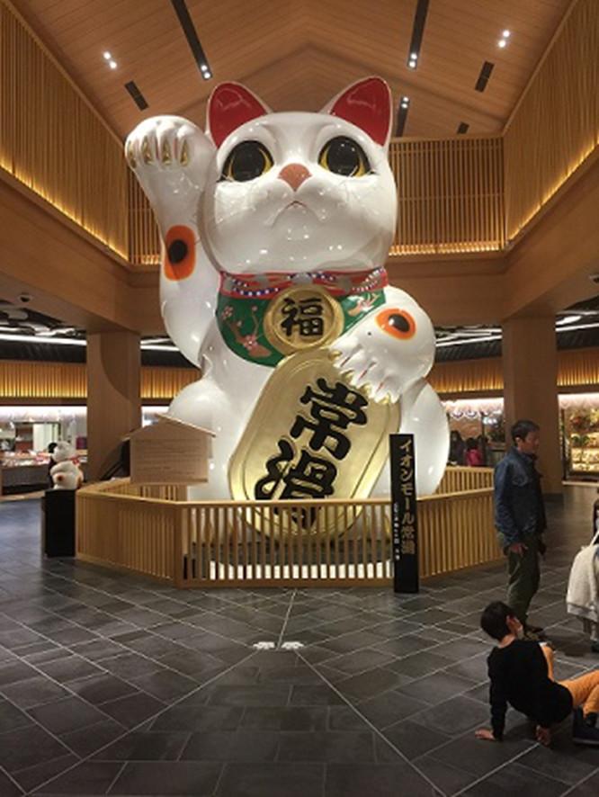 http://www.uchida-kk.jp/blog/201512_DSC_4.jpg