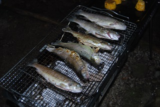http://www.uchida-kk.jp/blog/niji4.jpg